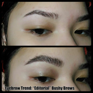 Eyebrow Designing: Bushy Brows